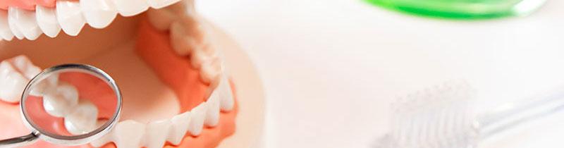 歯周病の健康への影響